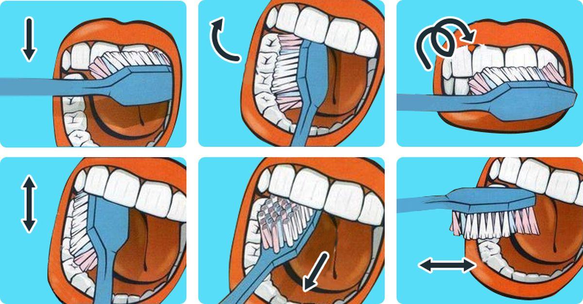 метод чистки зубов в картинках группы