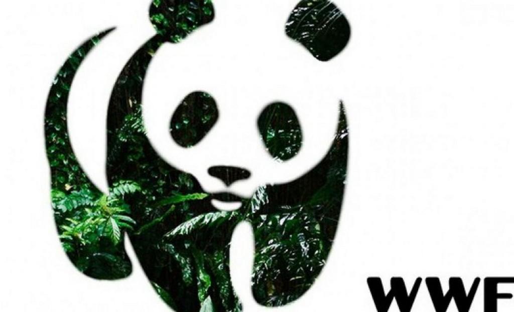 проспект медиа, wwf, delivery club, защита животных
