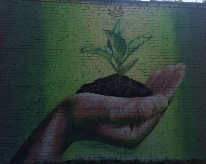 Проспект.Медиа, графиити в Коврове, стрит-арт