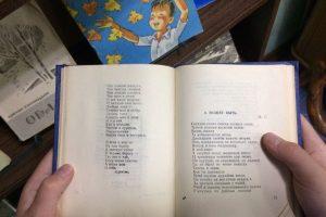 проспект медиа, библиотека семейного чтения, юрий синицы, всемирный день книголюбов
